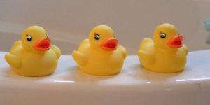 al agua patos. fotos de patos de plasticos. en la bañera. instaladores de bañeras en san sebastian donostia marcas de bañeras